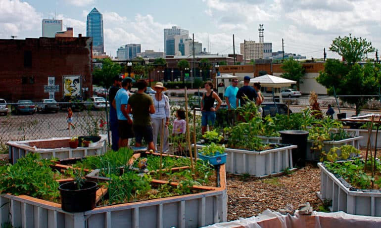 Community Gardens Can Help Kids Go Global