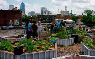 Community Gardens Can Help Kids Go Global